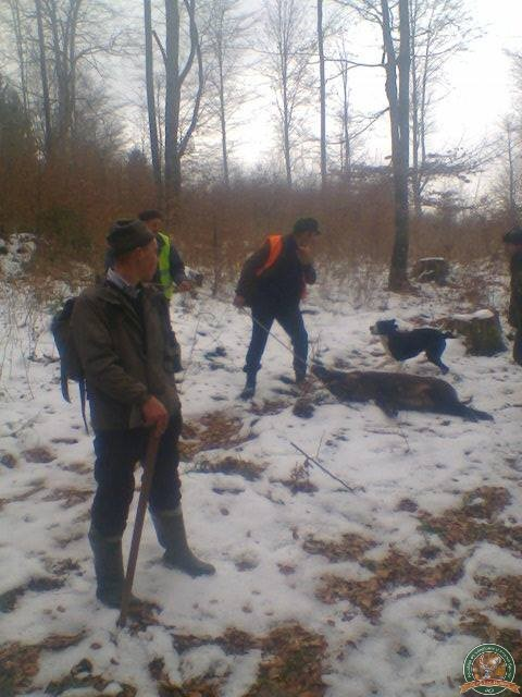 avps-lr-hunters-dragosa_25-21