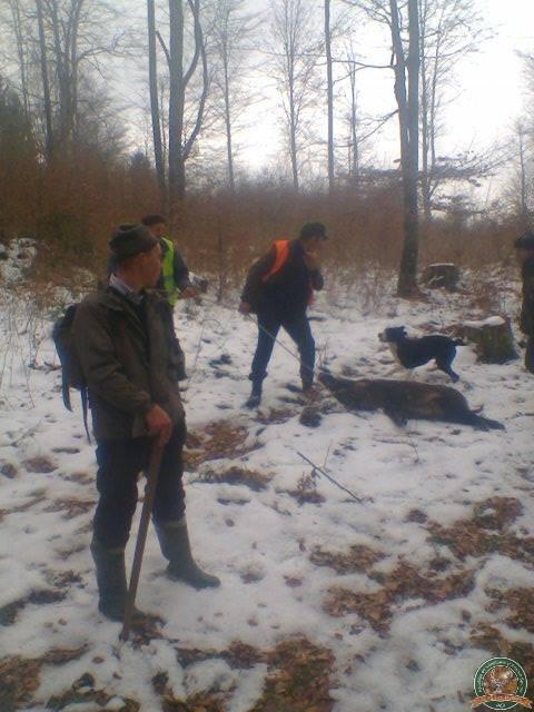 avps-lr-hunters-dragosa_25-31