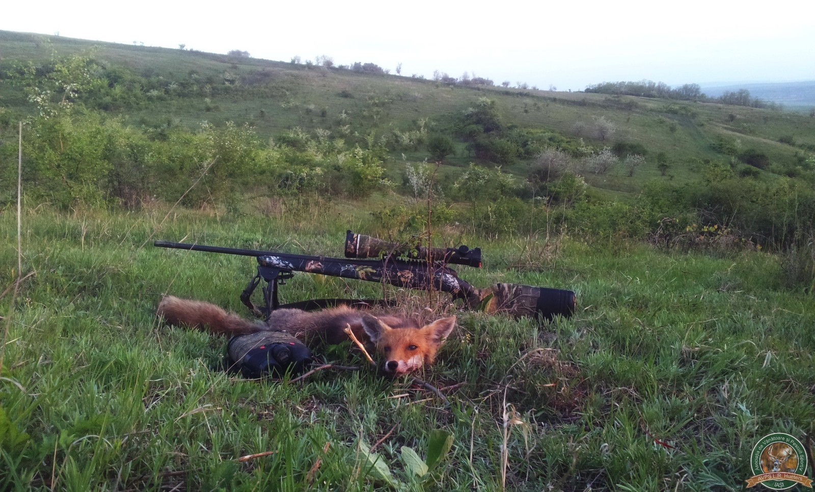 avps-lr-hunters-garceni_4-8