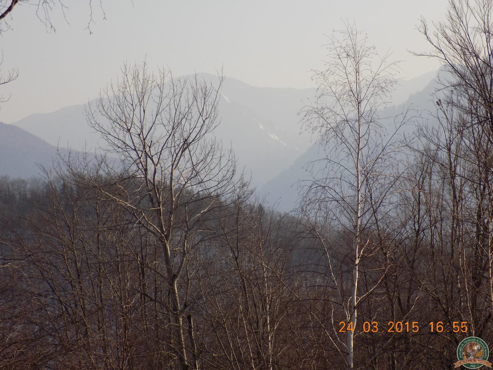 avps-lr-hunters-lepsa_20-46