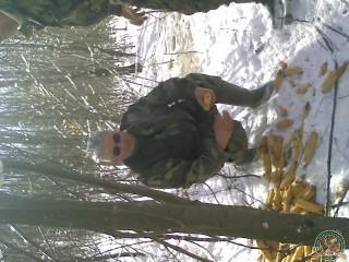 avps-lr-hunters-mironeasa_52-8