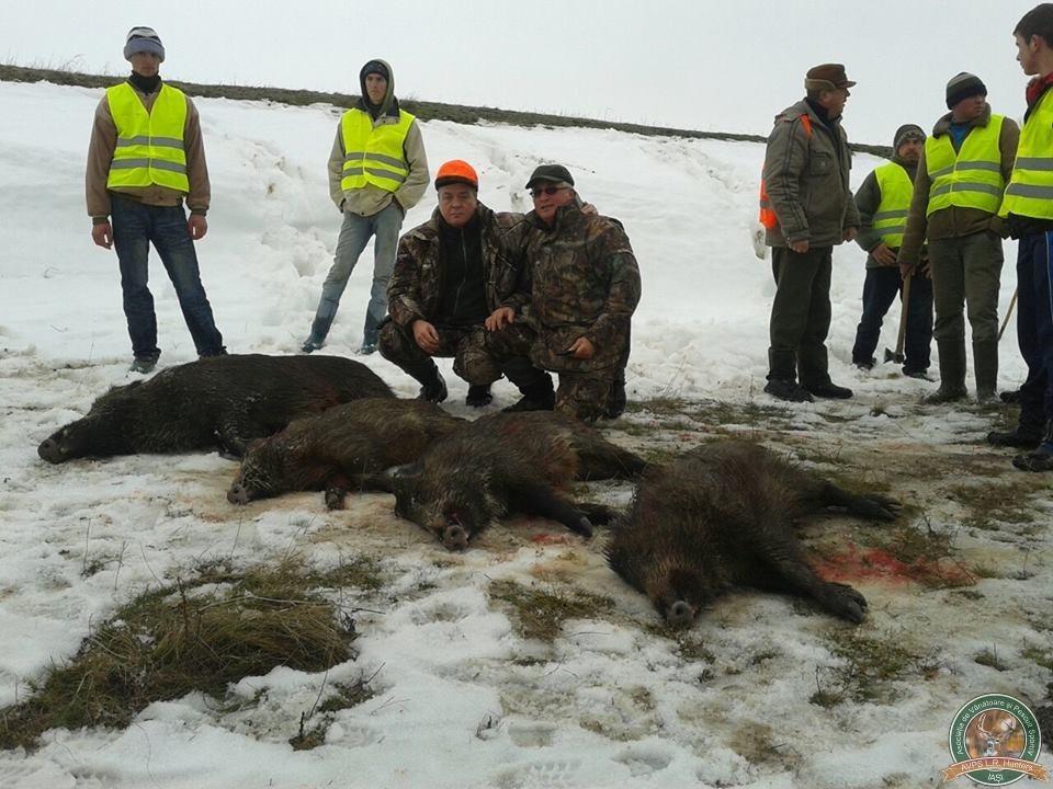 avps-lr-hunters-tibana_53-14