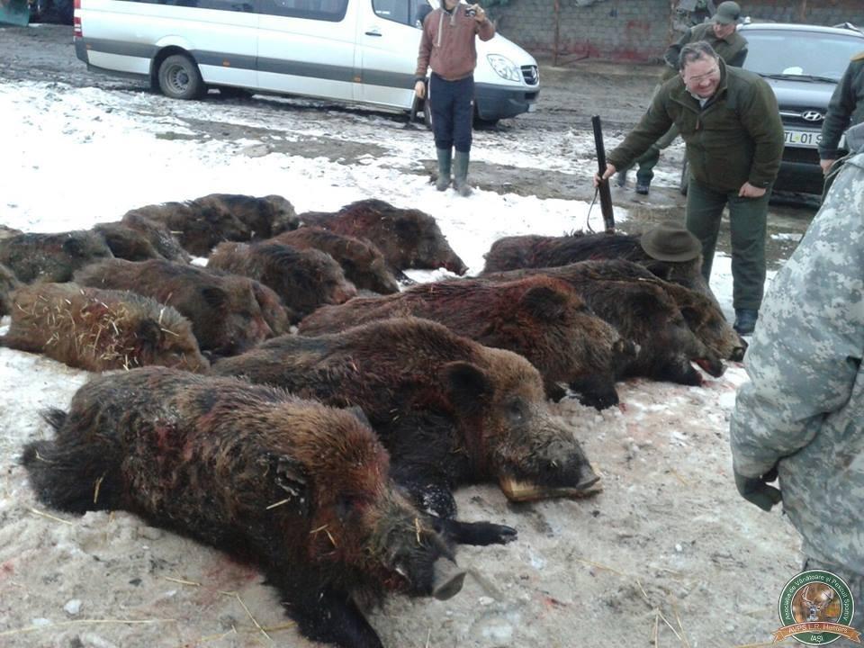 avps-lr-hunters-tibana_53-8