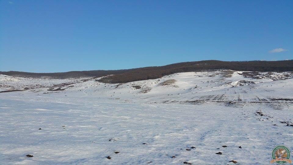 avps-lr-hunters-iarna-la-vanatoare-1