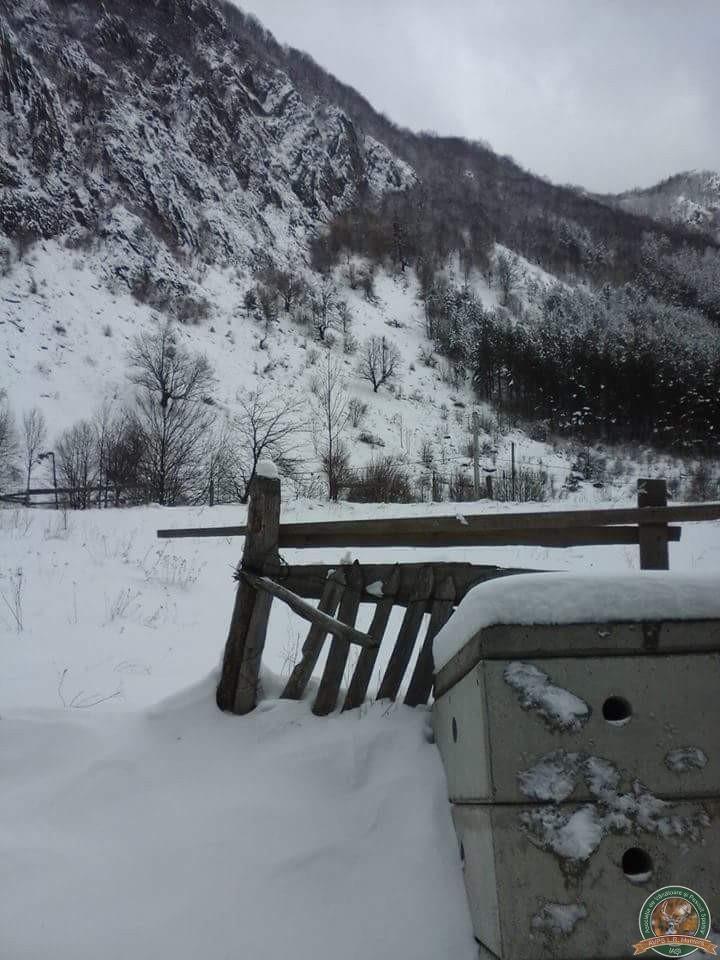avps-lr-hunters-iarna-la-vanatoare-17