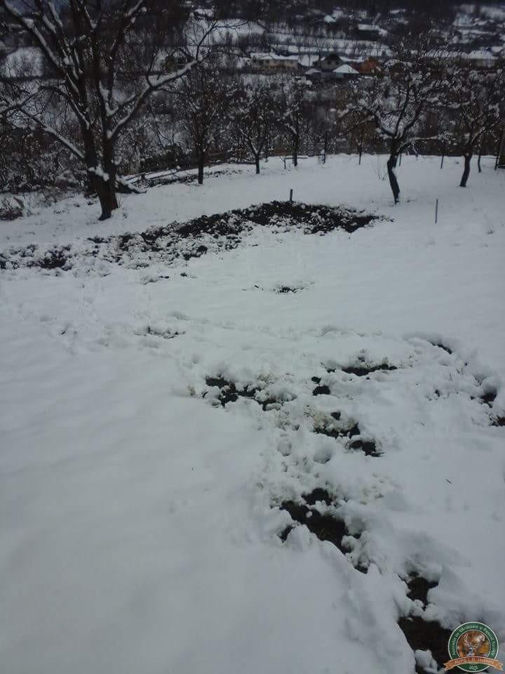 avps-lr-hunters-iarna-la-vanatoare-20
