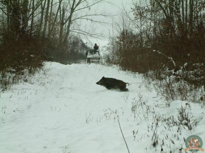 avps-lr-hunters-iarna-la-vanatoare-27