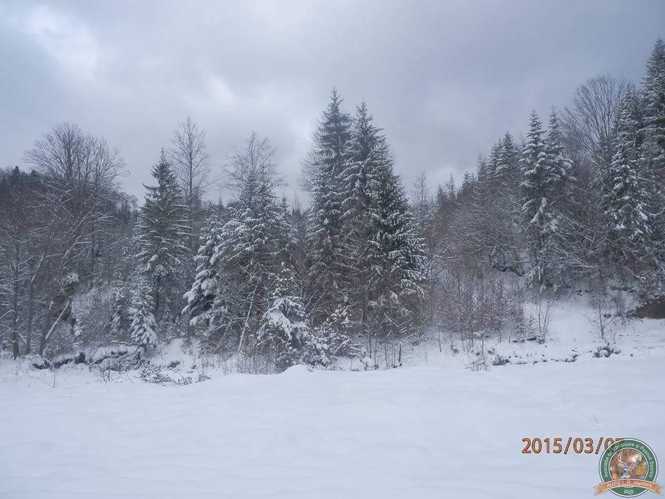 avps-lr-hunters-iarna-la-vanatoare-8